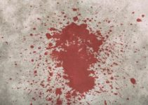 Blutfleck im Teppich