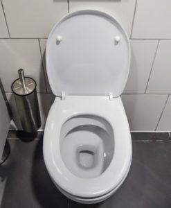 wc toilette reinigen